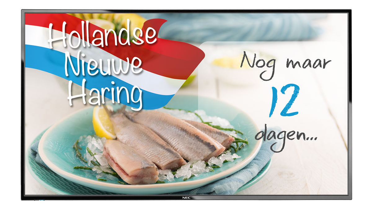 Hollandse Nieuwe Haring 2018